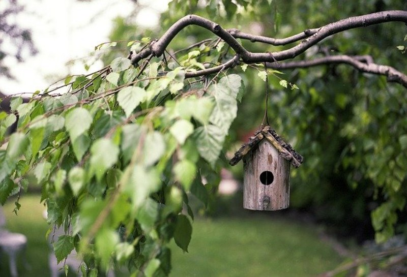 Come tenere in ordine il proprio giardino