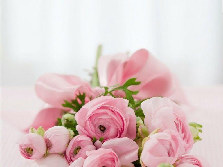 Consegna fiori in tutta Italia: ecco come fare